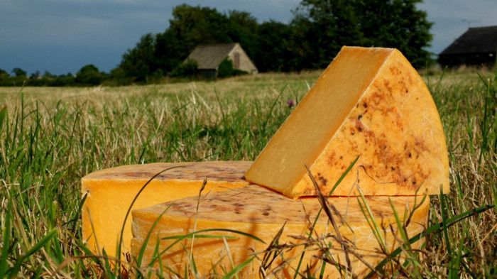 Britain excels with its firm farmhouse cheeses ...